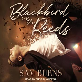 Download Blackbird in the Reeds by Sam Burns