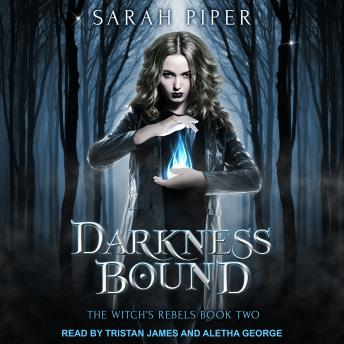 Darkness Bound: A Reverse Harem Paranormal Romance