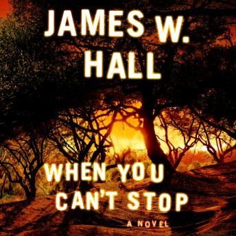 Download When You Can't Stop by James W. Hall