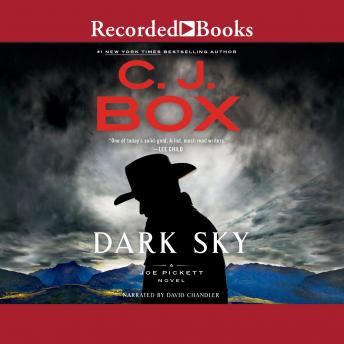 Download Dark Sky by C. J. Box