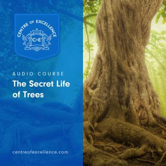 Download Secret Life of Trees by Centre Of Excellence