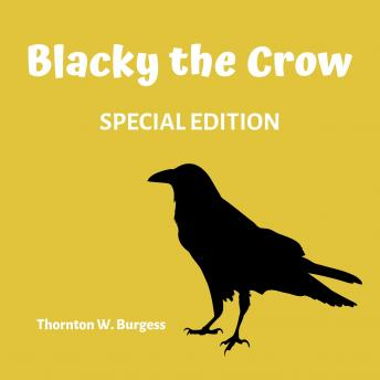 Blacky The Crow (Special Edition)
