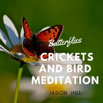 Butterflies Crickets and Birds Meditation