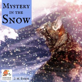 Mystery in the Snow