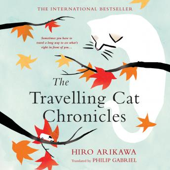 Travelling Cat Chronicles, Hiro Arikawa
