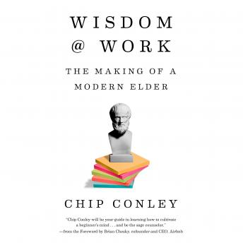 Download Wisdom at Work: The Making of a Modern Elder by Chip Conley