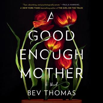A Good Enough Mother: A Novel