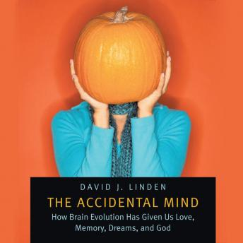 Download Accidental Mind: How Brain Evolution Has Given Us Love, Memory, Dreams, and God by David J. Linden