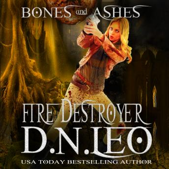 Fire Destroyer, Audio book by D. N. Leo