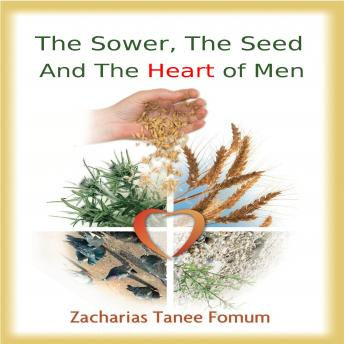 Sower Seed and The Hearts of Men