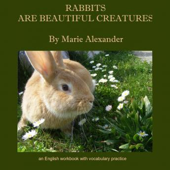 Rabbits Are Beautiful Creatures: An English Workbook With Vocabulary Practice - Beginner, Marie Alexander