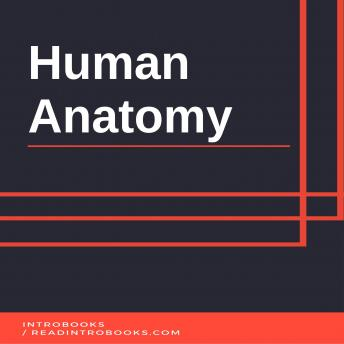 Download Human Anatomy by Introbooks