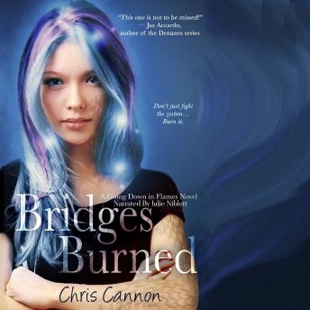 Bridges Burned, Chris Cannon