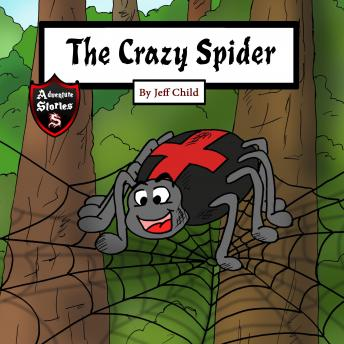 The Crazy Spider: Creation of the Perfect Web