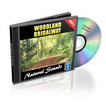 Woodland Bridal Way - Relaxation Music and Sounds: Natural Sounds Collection Volume 12