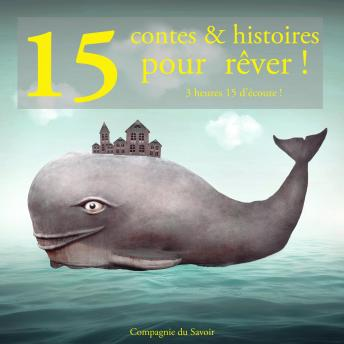 Download 13 contes pour rêver by Grimm , Andersen , Perrault