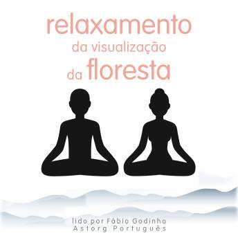 Relaxamento da visualização da floresta: o melhor do relaxamento