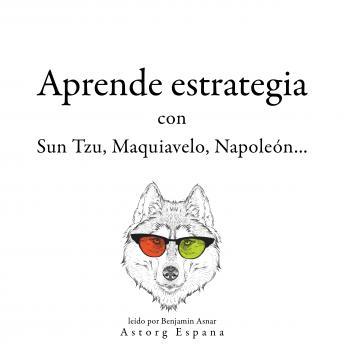 Aprende estrategia con Sun Tzu, Maquiavelo, Napoleón...: Colección las mejores citas