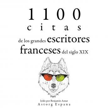 1100 citas de los grandes escritores franceses del siglo XIX: Colección las mejores citas