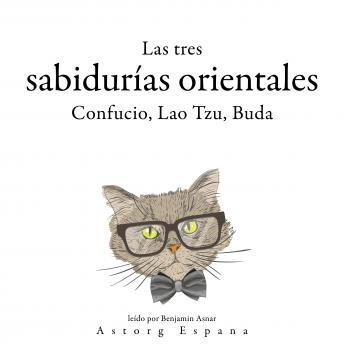 Los Tres Reyes Magos chinos, Confucio, Lao Tzu, Buda...: Colección las mejores citas