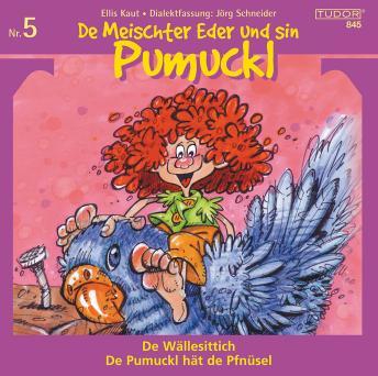 De Meischter Eder und sin Pumuckl Nr. 5: De Wällesittich - De Pumuckl hät de Pfnüsel