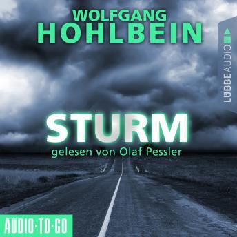 Sturm (Gekürzt)