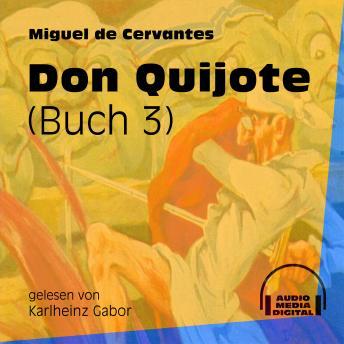 Don Quijote, Buch 3 (Ungekürzt)