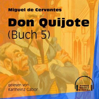 Don Quijote, Buch 5 (Ungekürzt)