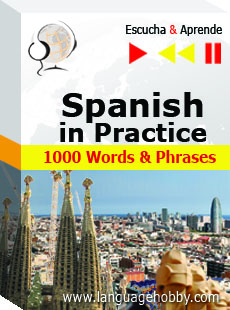 Download Spanish in Practice by Dorota Guzik