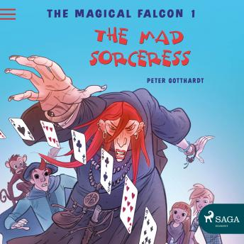 Magical Falcon 1 - The Mad Sorceress details