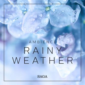 Ambience - Rainy Weather
