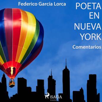 'Poeta en Nueva York' (Comentarios)