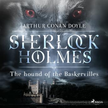 Hound of the Baskervilles details