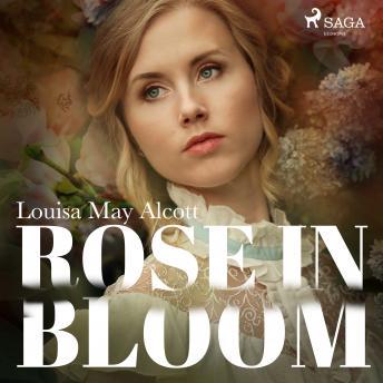 Rose in Bloom details
