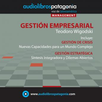 Download Gestión Empresarial by Teodoro Wigodski