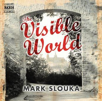 Visible World, Mark Slouka