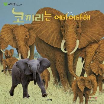 코끼리는 어마어마해