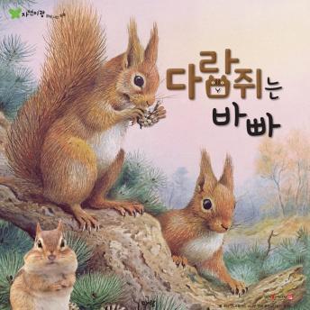 다람쥐는 바빠