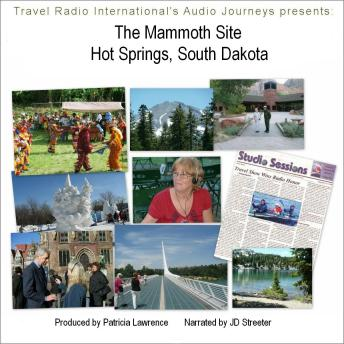 Download Mammoth Site of Hot Springs South Dakota: An In-Situ Paleontology Museum by Patricia L Lawrence