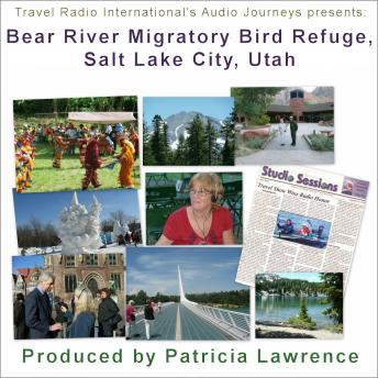 Bear River Migratory Bird Refuge, Salt Lake City Utah