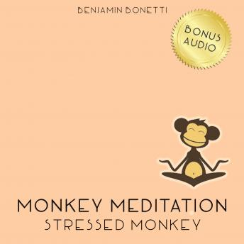 Stressed Monkey Meditation – Meditation For Reducing Stress