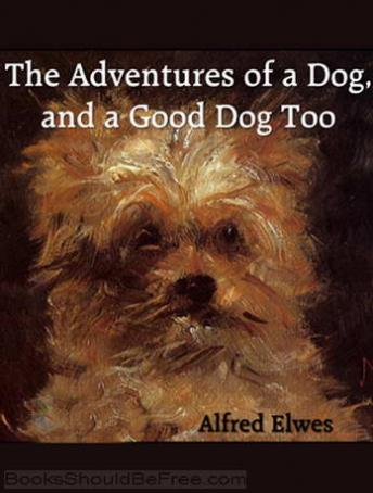 Adventures of a Dog, and a Good Dog Too, Alfred Elwes
