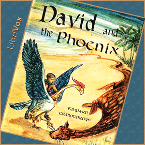 Download David and the Phoenix by Edward Ormondroyd
