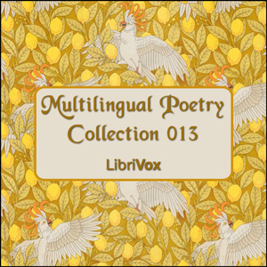 Multilingual Poetry Collection 013, Various Authors