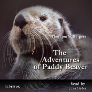 Download Adventures of Paddy Beaver by Thornton W. Burgess