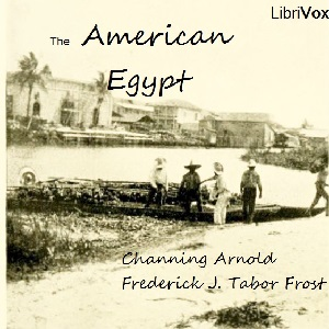Download American Egypt by Channing Arnold