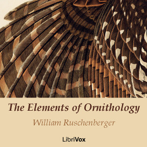 Elements of Ornithology, William Ruschenberger