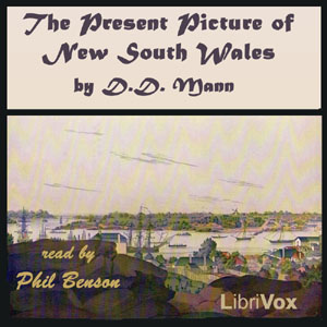 Present Picture of New South Wales, David Dickinson Mann