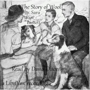 Download Story of Wool by Sara Ware Bassett