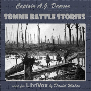 Download Somme Battle Stories by Alec John Dawson